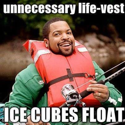 Ice cubes float in water