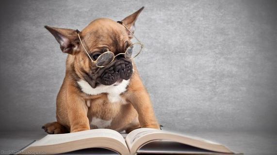 reading book.jpg